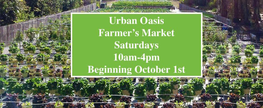 Farmer's Market Opening Day