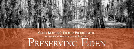 Preserving Eden - Clyde Butcher's Florida Photographs