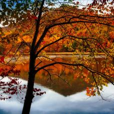 Best Fall Color Spots