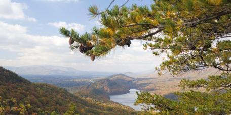 2016 Fall Foliage Schedule