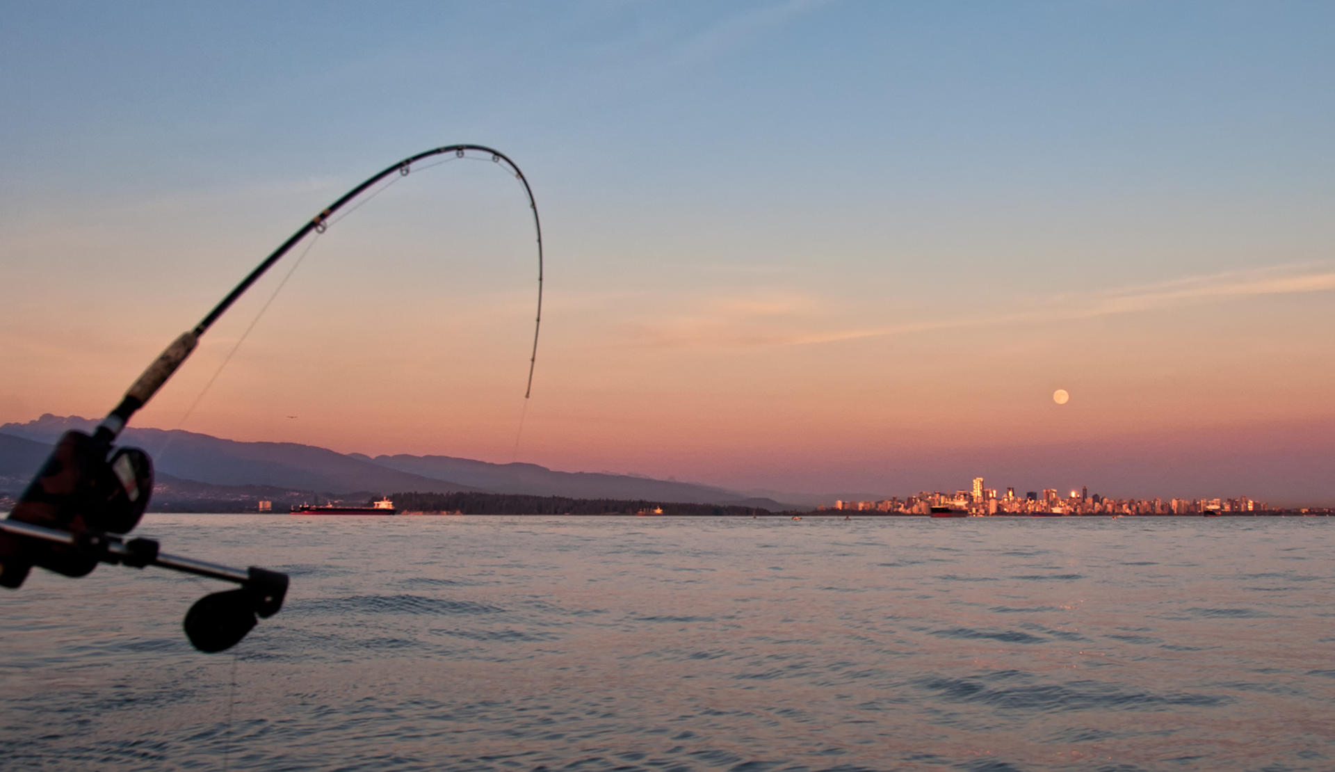 Vancouver fishing and boating information for What saltwater fish are in season now
