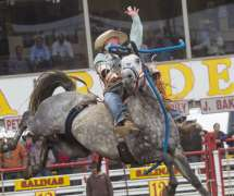 California Rodeo