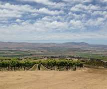 Monterey County Wine Country