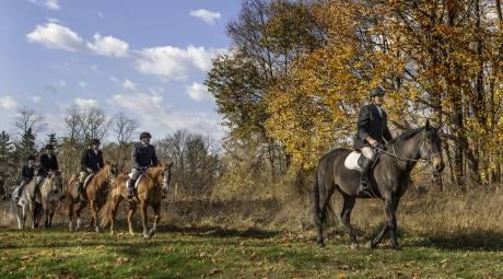Highlands Hunt