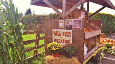 KID FRIENDLY HALLOWEEN - FALL FEST WEEKENDS