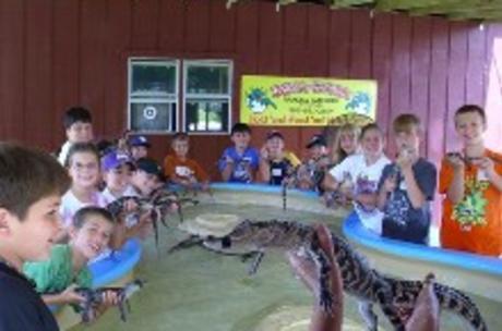 Insta-Gator Ranch
