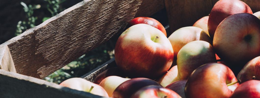 Eau Claire Apple Orchards