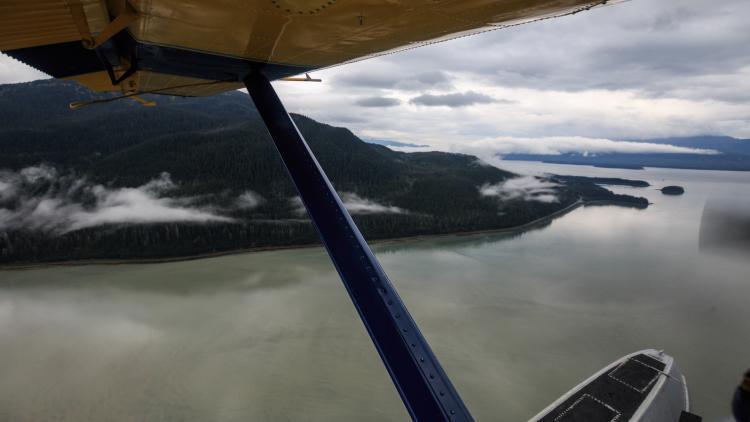 Plane Eye View