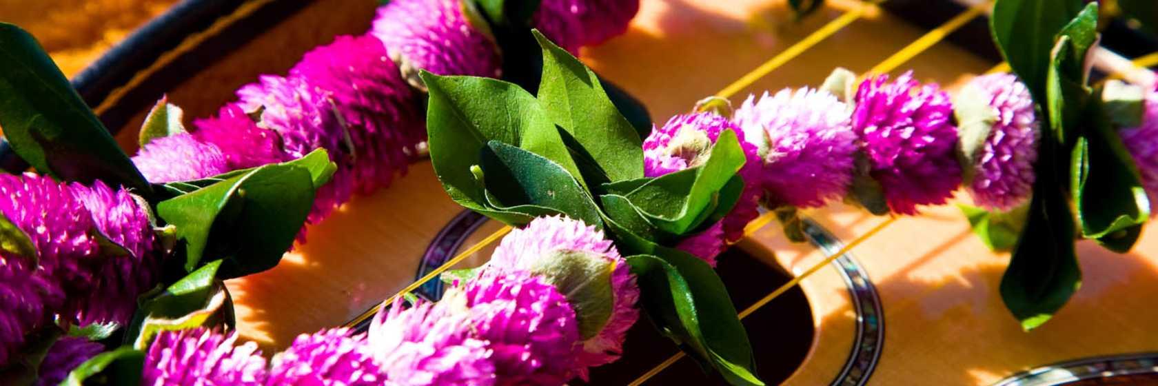 Culture & History - Ukulele & Flower