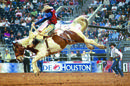 Livestock & Rodeo Show