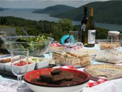 Finger Lakes picnic