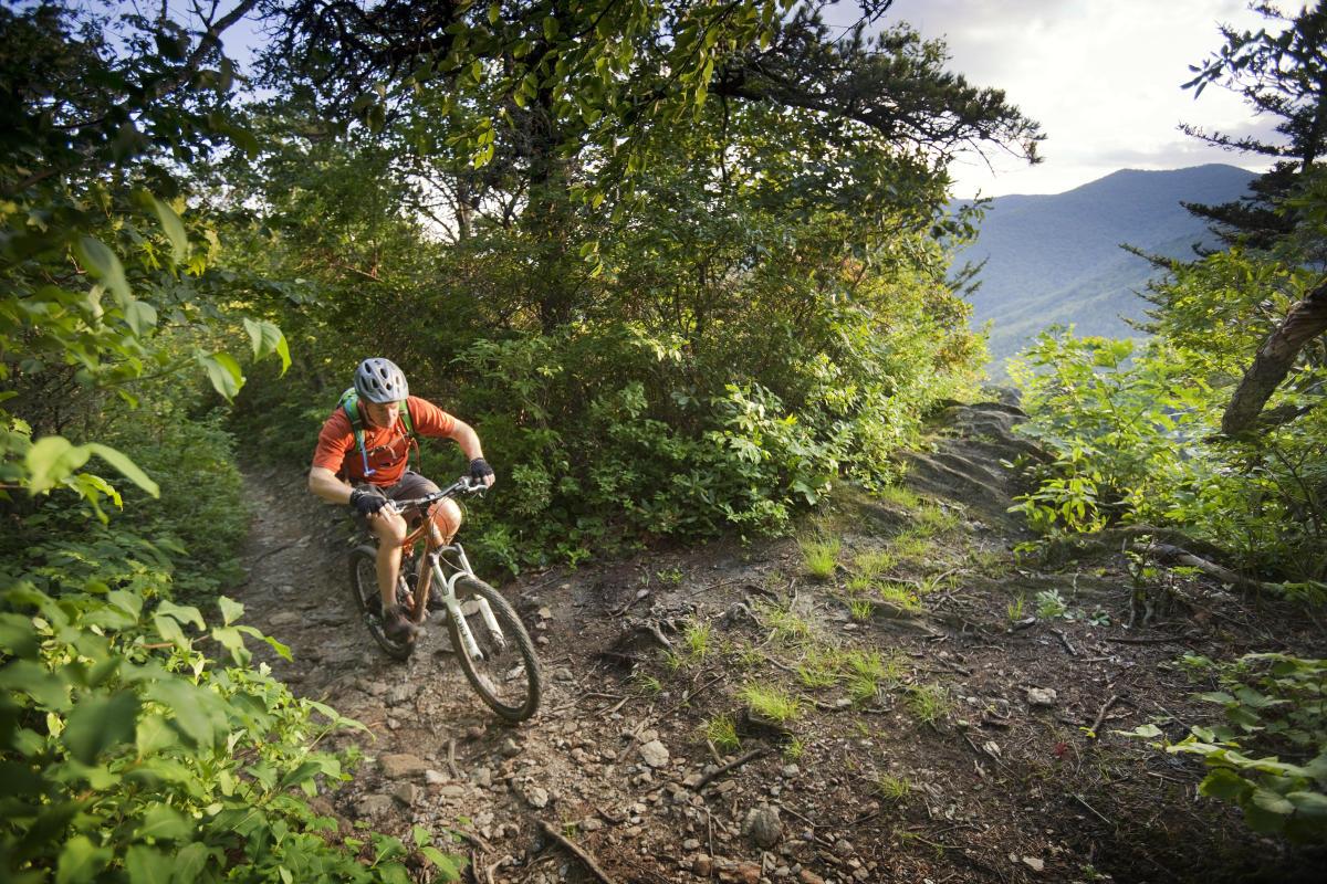 Biking Asheville Nc S Official Travel Site