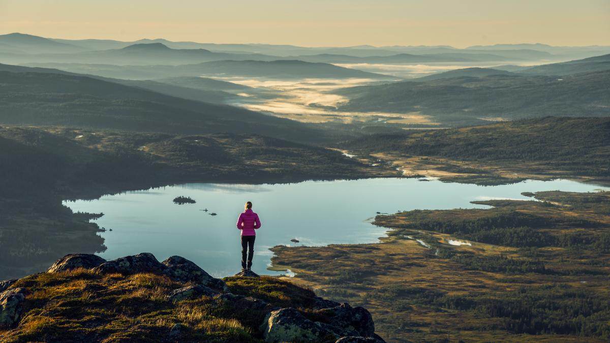 Trøndelag - Official travel guide to Norway - visitnorway.com
