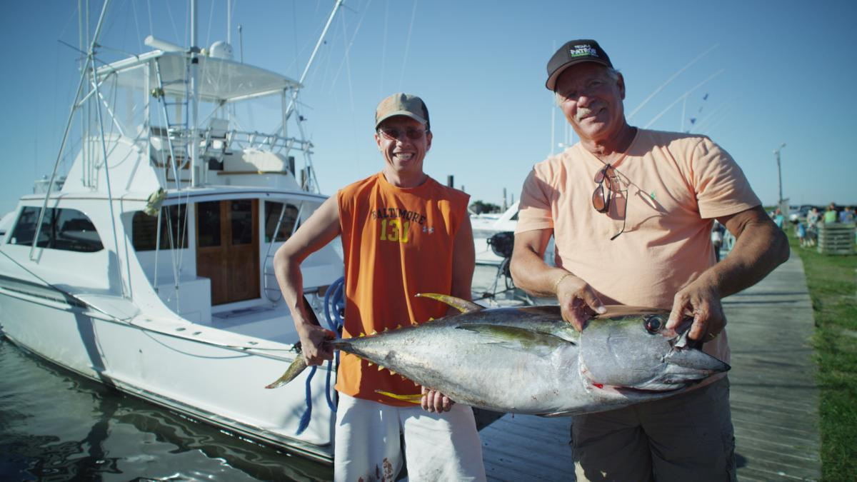 Fishing on the outer banks nc for North carolina surf fishing license