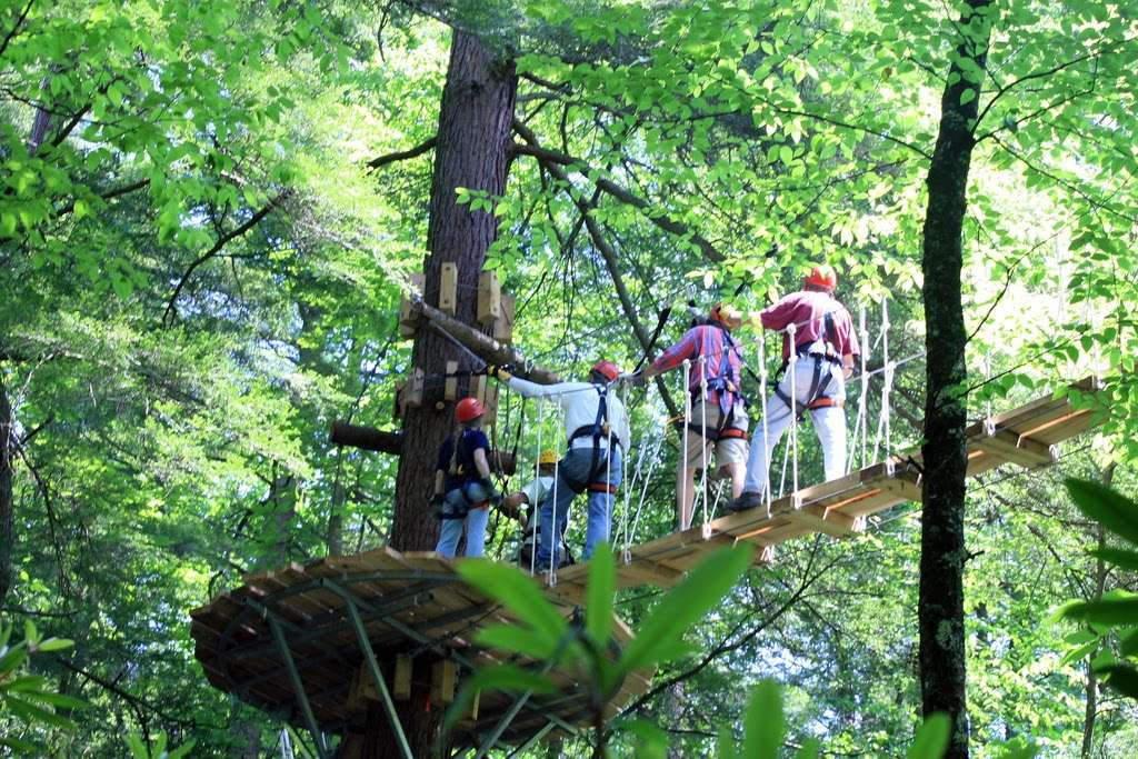 New Zip Line Tours Arrive in WNC