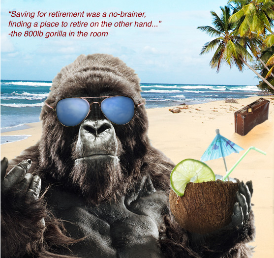 Bring the 800 Pound Gorilla to Asheville