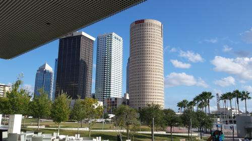 Tampa Bay tourism revenues soar nearly 20 percent in October