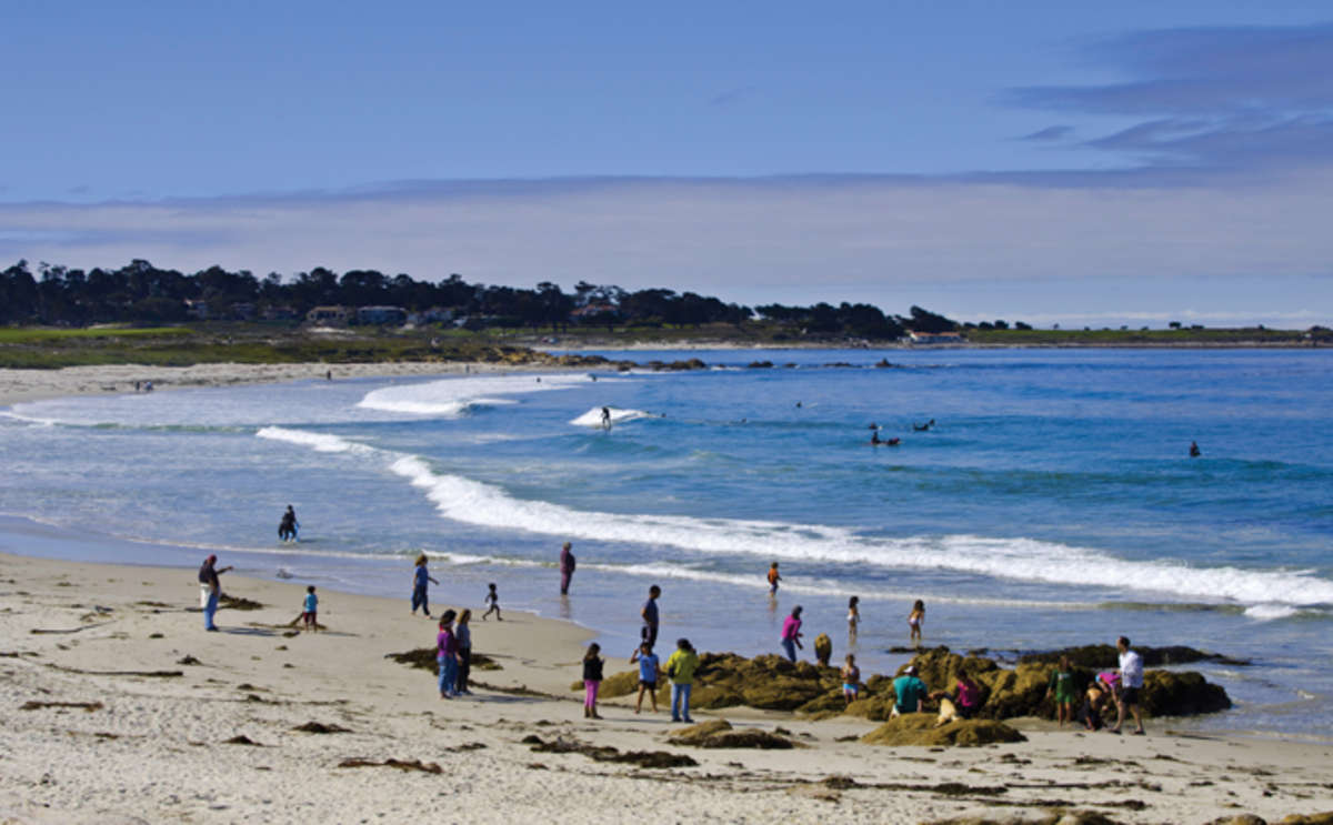 Asilomar State Beach, Pacific Grove