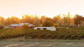 Recovered: Fifth Estate winery is back producing wine.