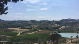Tuscan view from San Gimignano.