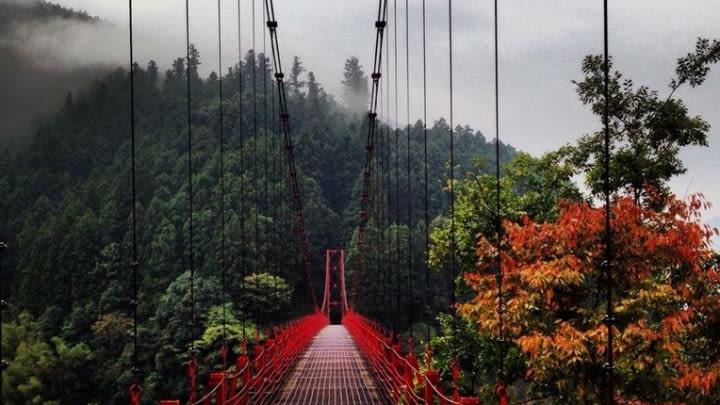 A beautiful, serene bridge in Japan (Image uploaded to Reddit by u/nategolon).