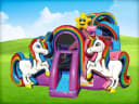 Unicorn Playzone w/ Wet or Dry Slide