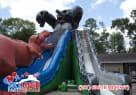 Houston T-Rex Slide