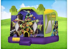 Ninja Turtle Combo with (Wet or Dry Slide)