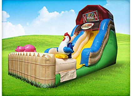 Farm Pig Chicken Slide