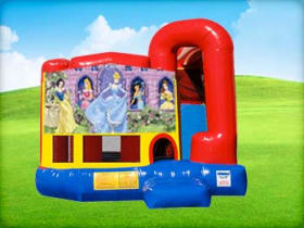 Disney Princess 4in1 Combo w/ Wet or Dry Slide
