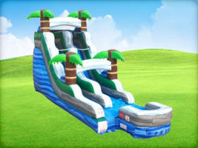 15ft Palm Tree Water Slide Rentals Houston