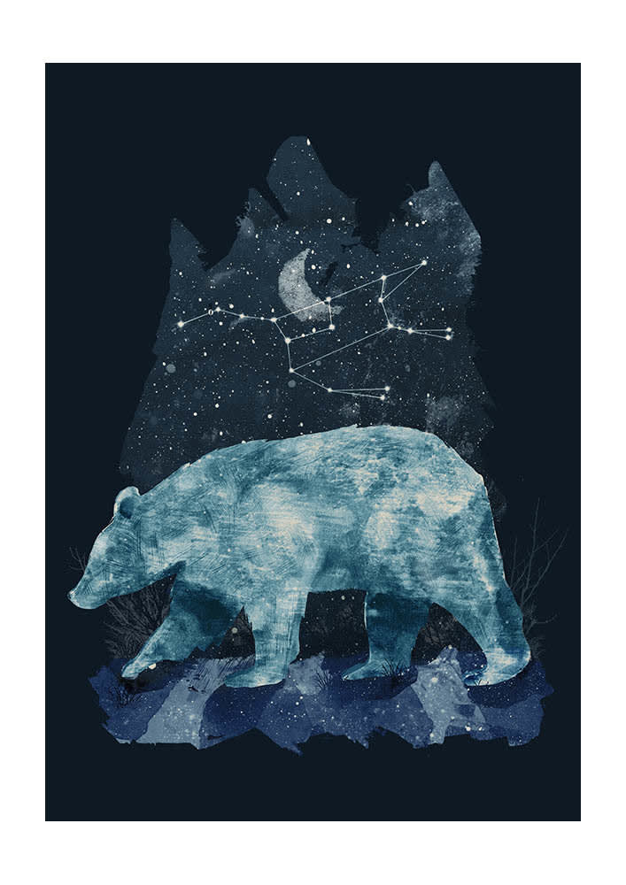 East End Prints  Great Bear A3 Framed Print