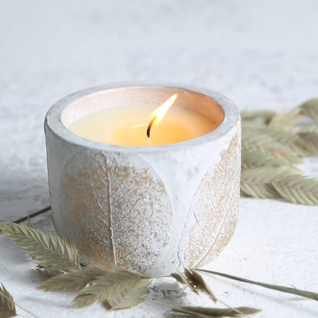 St Eval Candle Company Fig, Eden Small Pot Candle