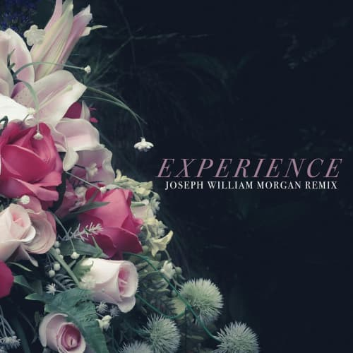 Experience (Joseph William Morgan Remix) - Single