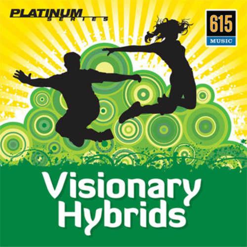 Visionary Hybrids