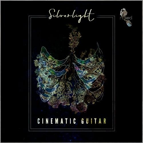 Silverlight - Cinematic Guitar