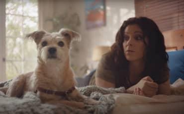 #AdoptPureLove – Shelter Pet Project – Rachel Bloom
