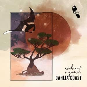 Dahlia Coast - Ambient Organic