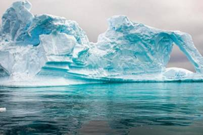 Antartica 500x500