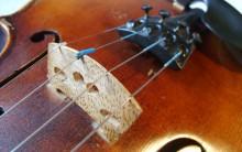 Rose Kavanagh (Violin)