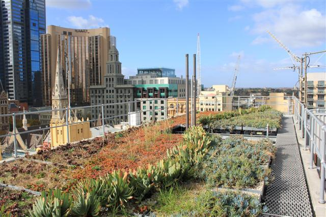Surveys show the majority of Australian citizens want greener cities, but what's getting in the way? Photo: Google