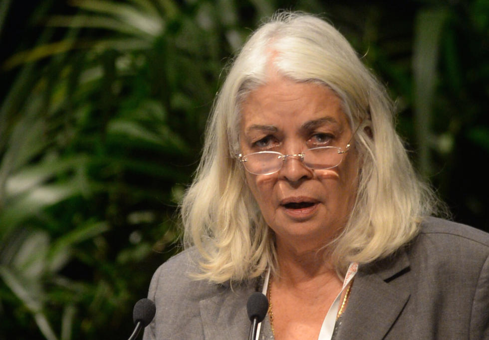 "Professor Marcia Langton says the program is nothing short of ""nation building''. Picture: Alan Porritt/AAP"