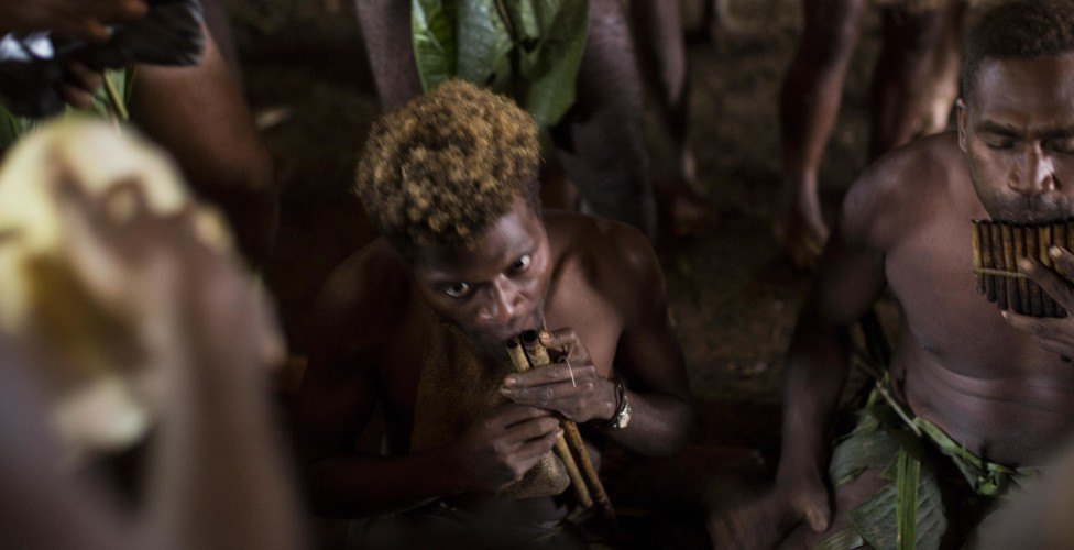 Basiana's Pig: A Tale of Wildlife Conservation, Murder and Redemption from the Solomon Islands