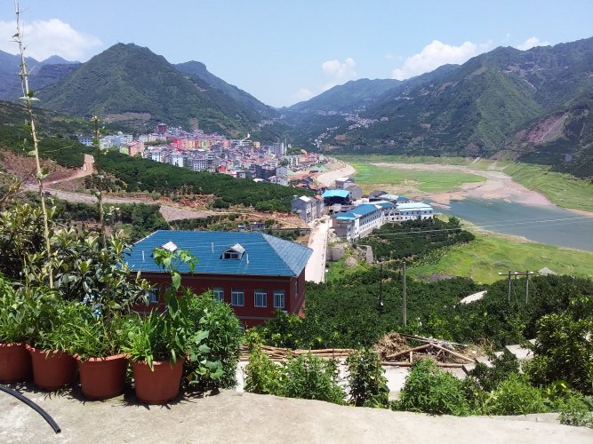 Scaling up Agriculture? The Local Realities of Land Transfer in Inland China