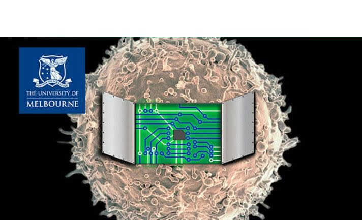 Designed to Order: Contemplating a Future where Synthetic Human Cells are Made on Demand