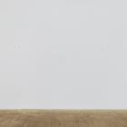 Henrik Olesen, Untitled, 2010, screws and dirt, 59 x 67 in.
