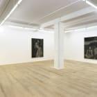 David Noonan, 2013, installation view, Foxy Production, New York