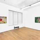 Sara Cwynar, Rose Gold, 2017, installation view, Foxy Production, New York