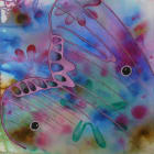 Glasswing 5