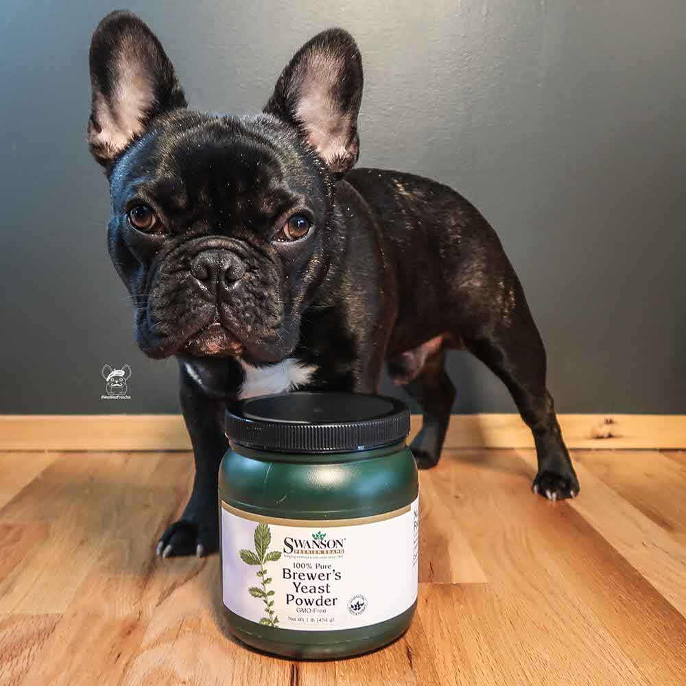 Brewer's Yeast for Dogs
